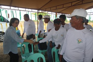 Farmers Field School (FFS Corn) - Moncada Tarlac (3)