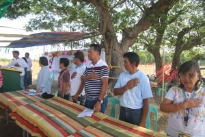 Farmers Field School (FFS Corn) - Moncada Tarlac (8)