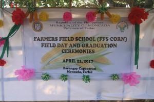 Farmers Field Schoold (FFS Corn) Field Day and Graduation Ceremonies (1)
