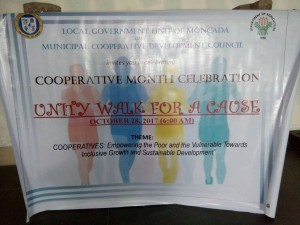 Unity Walk for a Cause (1)