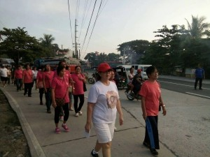 Unity Walk for a Cause (3)